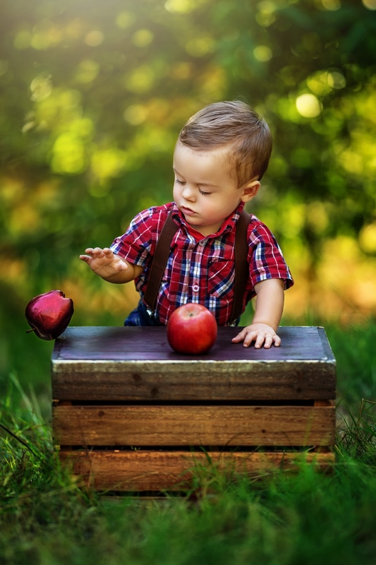 One Year Old Boy Milestone Session with Apples in a Red Plaid Shirt and Brown Suspenders in Fallbrook