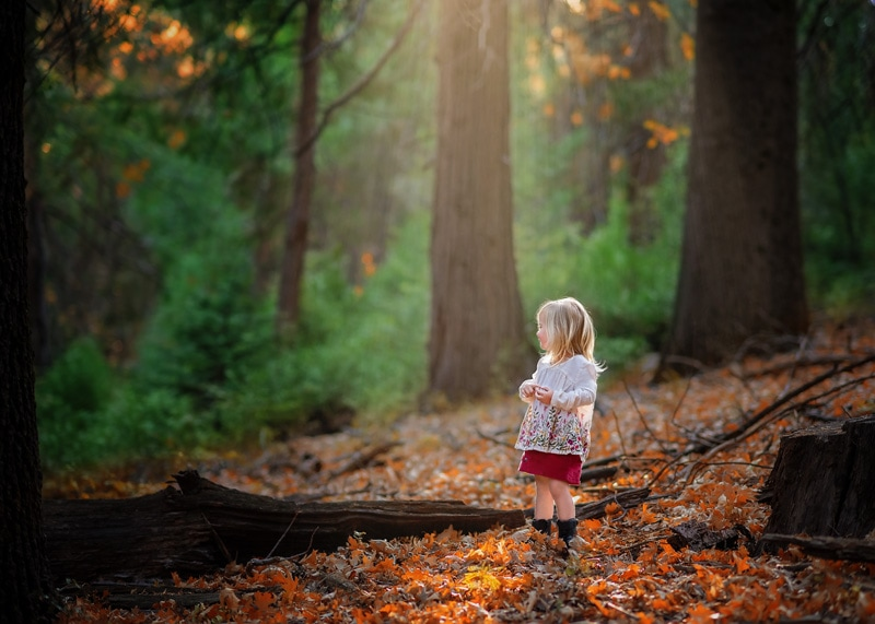 Child Photography, Toddler girl looking around in the forest in golden fall sunlight portrait